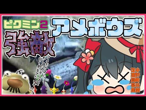 【ピクミン2】#6♨水中の城地下3階からスタート!緊張のアメボウズ戦!【小野町春香/にじさんじ】