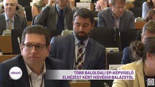 Több baloldali EP-képviselő elnézést kért Hidvéghi Balázstól