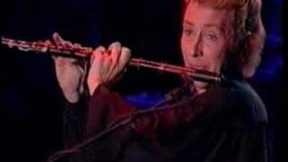 Michael Flatley Riverdance flute