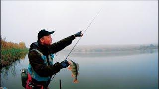КАБАНЫ брали эту резину в заглот..Крупный окунь..рыбалка на спиннинг.