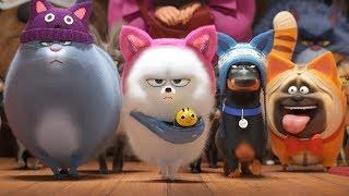 Секрети домашніх тварин 2. Офіційний трейлер (український)