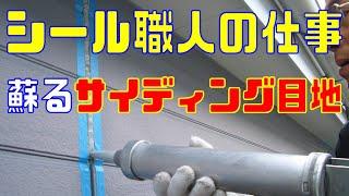 本物のシーリング職人完全版・サイディング外壁 thumbnail