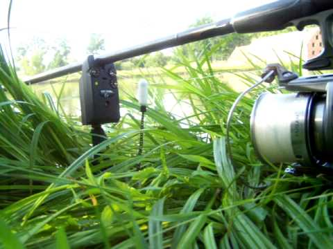 Carp Tackle Review Diawa Entoh Reel Doovi