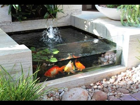 Mini Pond Design Youtube
