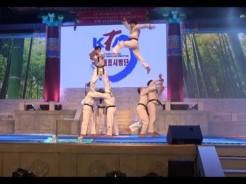 Taekwondo HÀN QUỐC biểu diễn CỰC HAY