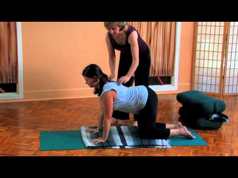 yoga lower back pain program part 2  youtube