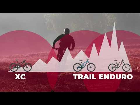 Mountain Bike Comparison: XC vs Enduro vs Trail Bikes Explained
