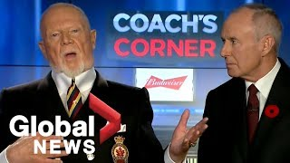 Don Cherry faces backlash over comments on Remembrance Day, poppies and immigrants