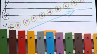 Wie funktioniert das Notensystem - blitzschnell erklärt
