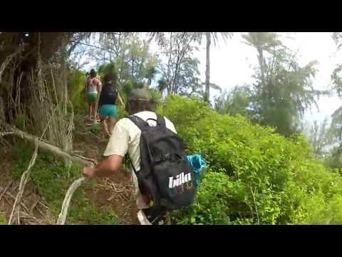 See The Road to Hana | Maui Tours | Road to Hana Tour | Lahaina's Last Resort