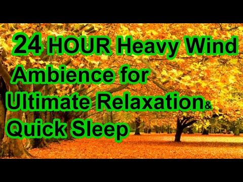 24 HOUR HEAVY WIND AMBIENCE; Sleep/Relax/Yoga/Spa/Reiki/Meditation/Study/Calm/Mood/Lullaby Babies/At