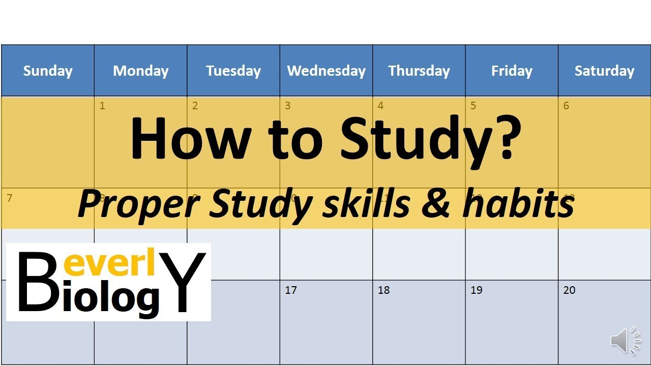 Creating Mindful Study Habits - YouTube