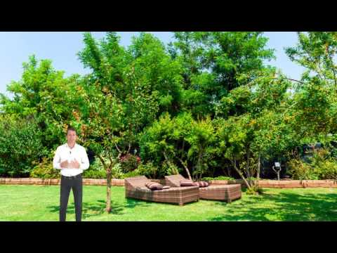 Jardinier paysagiste vitrolles youtube for Jardinier paysagiste gironde