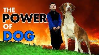 Chota Imran Khan With Dog Funny video Entertainment Fun Buner 2019 new Video farman kaskar