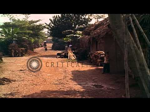 Daily routine activities in a village in Vietnam HD Stock Footage