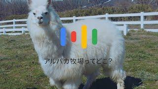 Google アプリ:「どこ?」検索 thumbnail