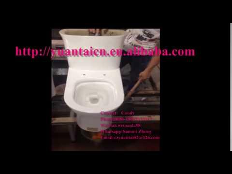 Water Ridge One Piece Dual Flush Toilet Flushing Test Saving Desigh