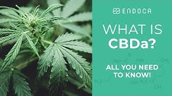 What is CBDa? 9 Facts (That You Probably Didn't Know!)