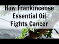 Can Frankincense Oil Cure Cancer? Frankincense Oil Kills Cancer Cells Studies Show