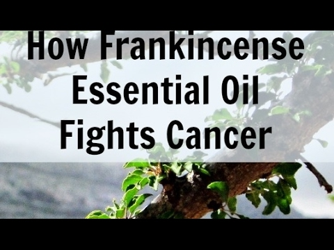 Frankincense And Cancerous Tumors