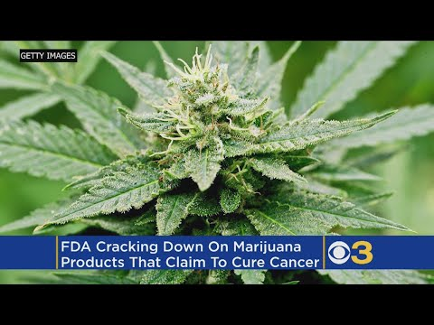 Food And Drug Administration Cracks Down On Claims That Cannabis Can Cure Cancer
