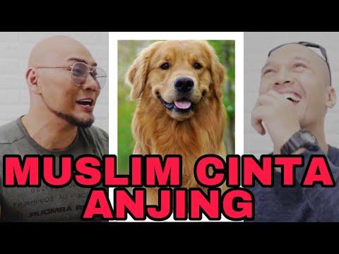 SAYA MUSLIM CINTA ANJING... MASIH NAJIS KAH? (The Golden Family)