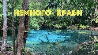 Краби: голубое и изумрудное озера, мангровые деревья и водопад горячего источника
