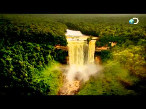 Down To Guyana | Gold Rush - The Jungle