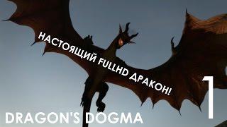 Dragon's Dogma Dark Arisen Прохождение на русском (русская озвучка) Часть 1 Я ИЗБРАННЫЙ!