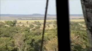 Sayari Camp - Serengeti