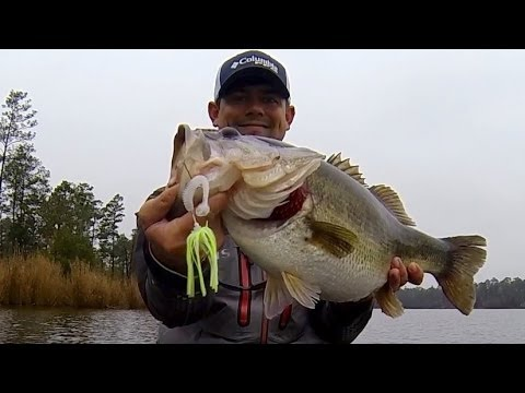 10 lb. Bass on a Chatterbait. Spring Bass Fishing.