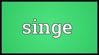 Singe Meaning