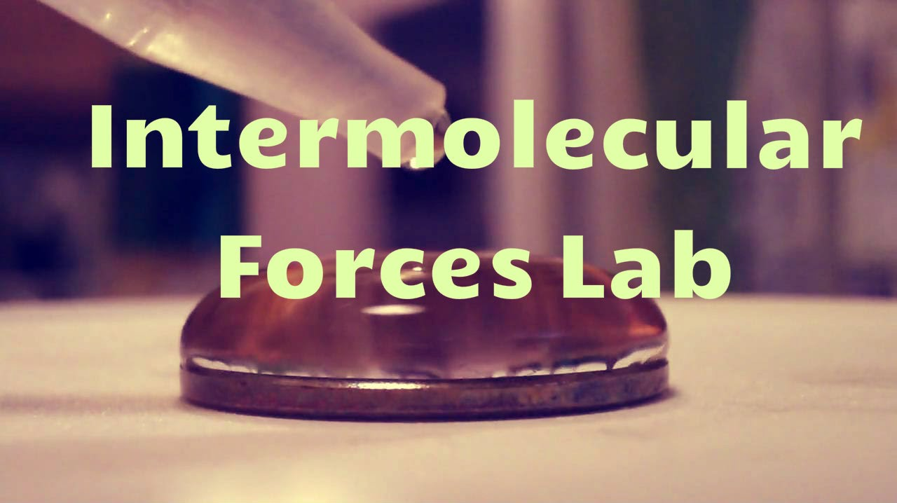 Intermolecular Forces Lab