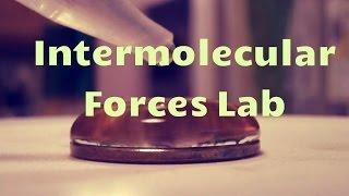 Intermolecular Forces Lab