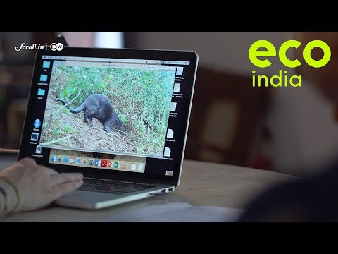 Eco India, Episode 34: Assessing how human activity is irreversibly changing natural ecosystems