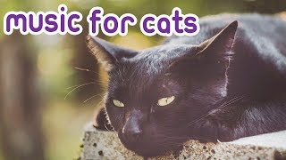 Relax My Cat! Music to Calm your Cat!