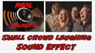Small crowd laughing sound effect - realsoundFX