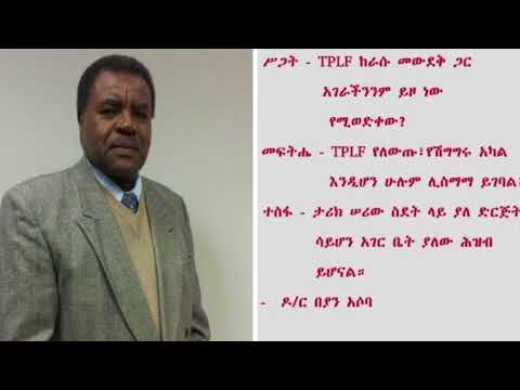 SBS Amharic Interview With Dr Beyan Asoba | ODF | Ethiopia