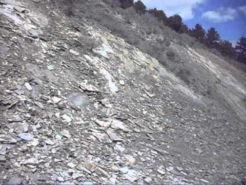 Western Interior Seaway - Dinosaur Ridge, Morrison, Colorado