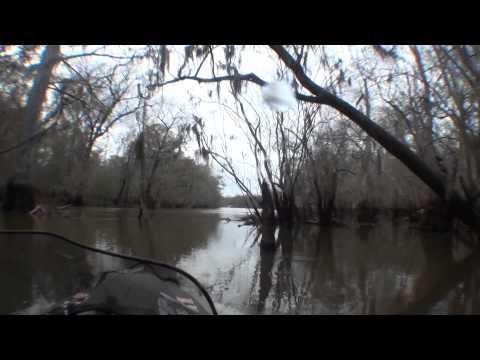 MOKAI with Neutral - Exploring Lake Bluff on the Altamaha River Georgia
