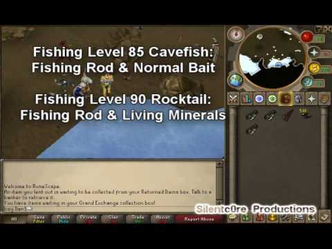 RuneScape 99 Fishing Guide - Rocktail & Cavefish (With Exp/cash Rates)