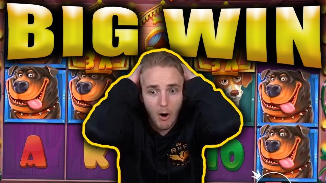 BIG WIN on THE DOG HOUSE - Casino Big Wins