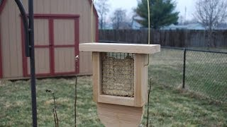 How To Make A Suet Bird Feeder (woodlogger.com)