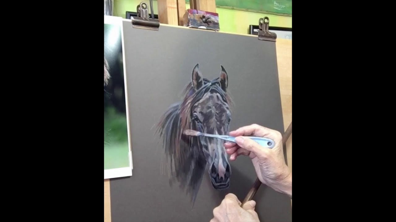Time Lapse Video of a Pastel Horse Portrait