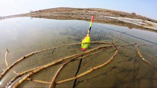 РАДИ ТАКИХ ПОКЛЕВОК СТОИЛО СЮДА ЕХАТЬ Рыбалка на поплавок весной 2021