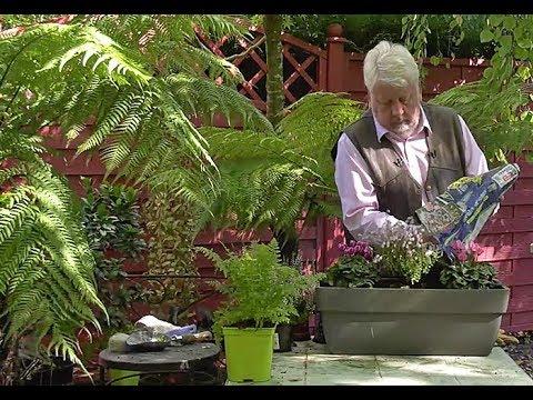comment composer un decor fleuri d automne dans une jardiniere