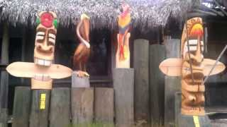 Tiki, Pelican, Parrot Wood Carving
