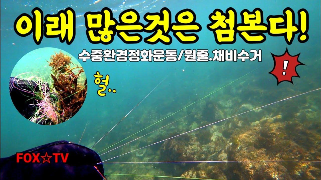수중환경정화/원줄수거하기/바다살리기Save the Ocean-FOX☆TV