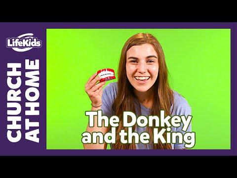 church-at-home:-bible-adventure-|-june-6-7-|-lifekids-online