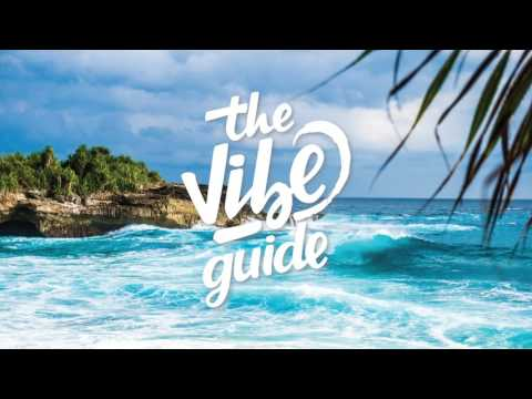 The Vibe Guide 1 Million Mix / Best of TVG